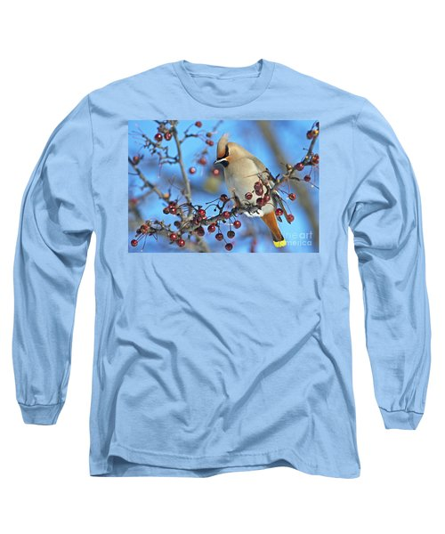 Winter Colors.. Long Sleeve T-Shirt
