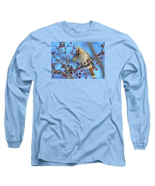 Winter Colors.. Long Sleeve T-Shirt