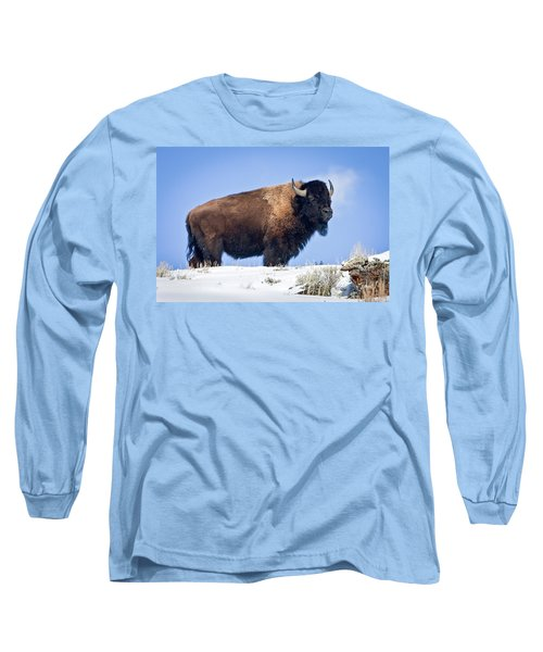 Long Sleeve T-Shirt featuring the photograph Winter Warrior by Jack Bell