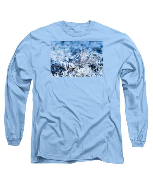 Winter's Icy Grip Long Sleeve T-Shirt