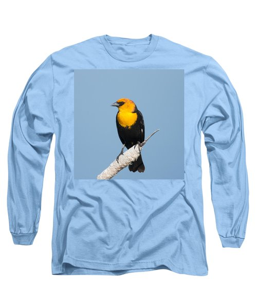 Long Sleeve T-Shirt featuring the photograph Yellow Headed Blackbird by Jack Bell