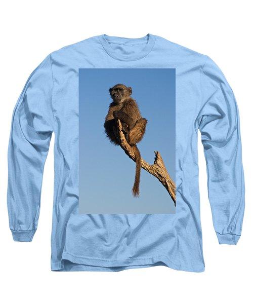 Baboon Sentry Namibia Long Sleeve T-Shirt