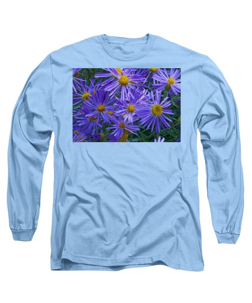Blue Asters Long Sleeve T-Shirt