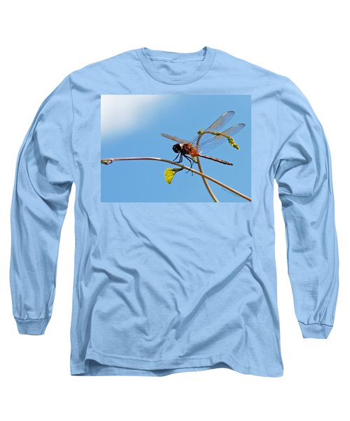 Dragonfly On A Vine Long Sleeve T-Shirt by Kay Lovingood