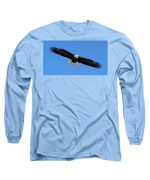 Flying Bald Eagle Long Sleeve T-Shirt by Doug Lloyd