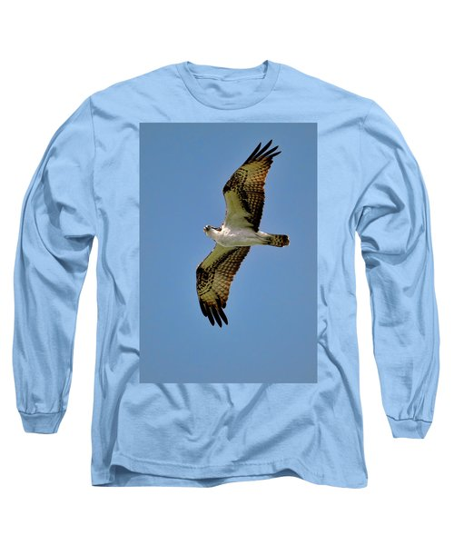 Osprey Above Long Sleeve T-Shirt
