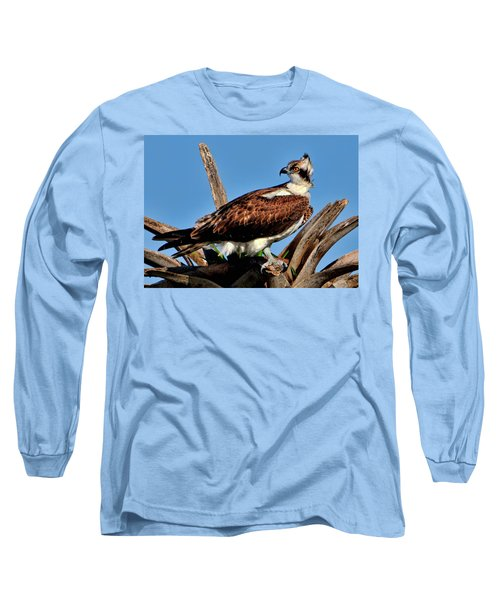 Osprey On A Windy Morning Long Sleeve T-Shirt
