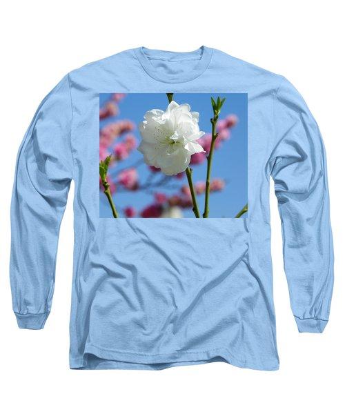 Spring Long Sleeve T-Shirt by Sandra Lira