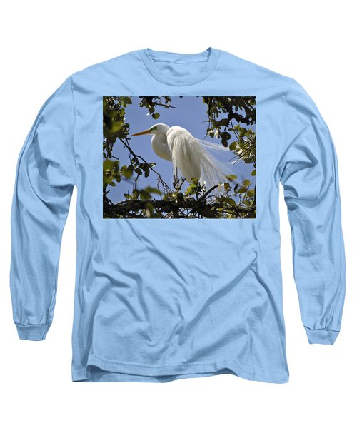 Spring Time Beauty Long Sleeve T-Shirt