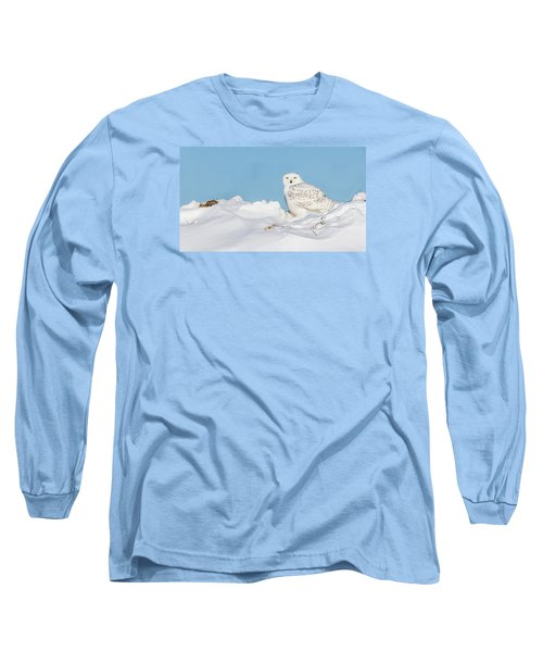 Snowy Owl Long Sleeve T-Shirt by Dan Traun