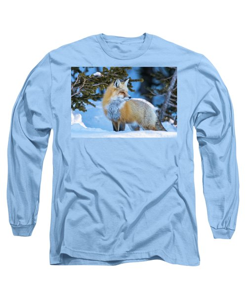 The Snow Beauty Long Sleeve T-Shirt