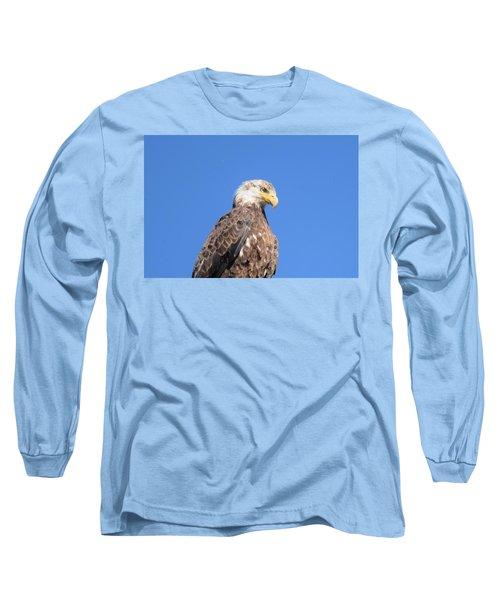 Bald Eagle Juvenile Perched Long Sleeve T-Shirt