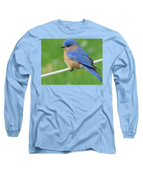 Long Sleeve T-Shirt featuring the painting Blue Bird  by Betty Pieper