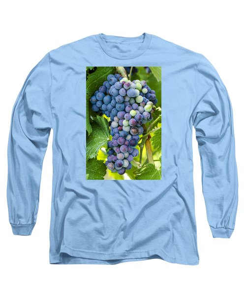 Red Wine Grapes Long Sleeve T-Shirt by Teri Virbickis