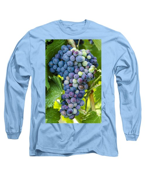 Red Wine Grapes Long Sleeve T-Shirt