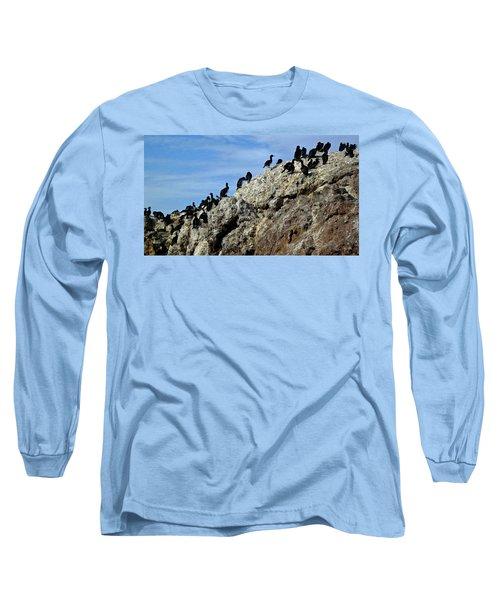 A Gulp Of Cormorants Long Sleeve T-Shirt by Sandy Taylor