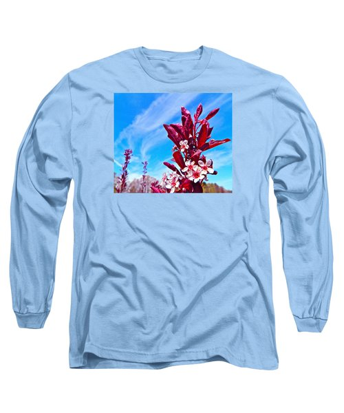 Aglow With Beauty Long Sleeve T-Shirt by Randy Rosenberger