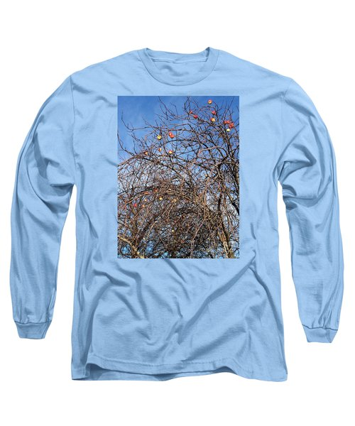Apples In December Long Sleeve T-Shirt