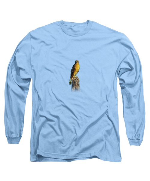 Northern Harrier Hawk Long Sleeve T-Shirt
