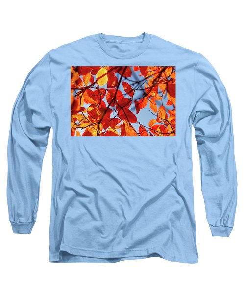 Autumn In The Arboretum Long Sleeve T-Shirt
