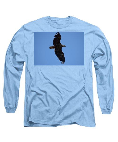 Bald Eagle Juvenile Soaring Long Sleeve T-Shirt