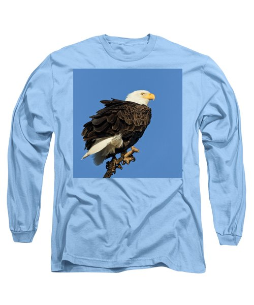 Bald Eagle Squared Long Sleeve T-Shirt