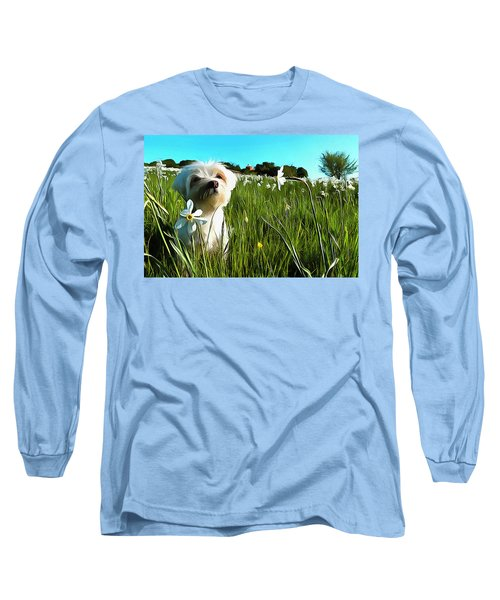 Blooming Daffodils In The Antola Park With Maltese I Paint Long Sleeve T-Shirt