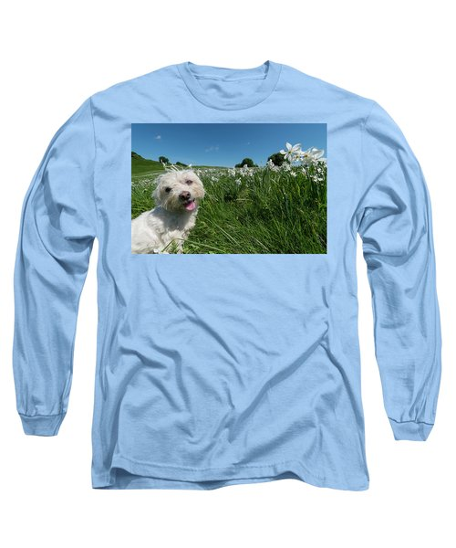 Blooming Daffodils In The Antola Park With Maltese II Long Sleeve T-Shirt