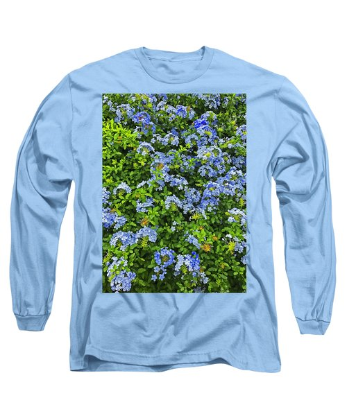 Blossoms Of Phlox Flowers Long Sleeve T-Shirt