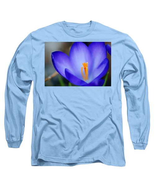 Blue Crocus Long Sleeve T-Shirt