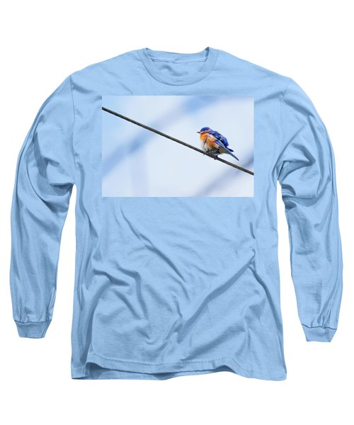 Long Sleeve T-Shirt featuring the photograph Bluebird Of Happiness by Linda Unger