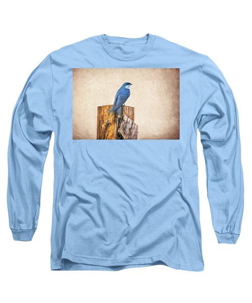Long Sleeve T-Shirt featuring the photograph Bluebird Post by James BO Insogna