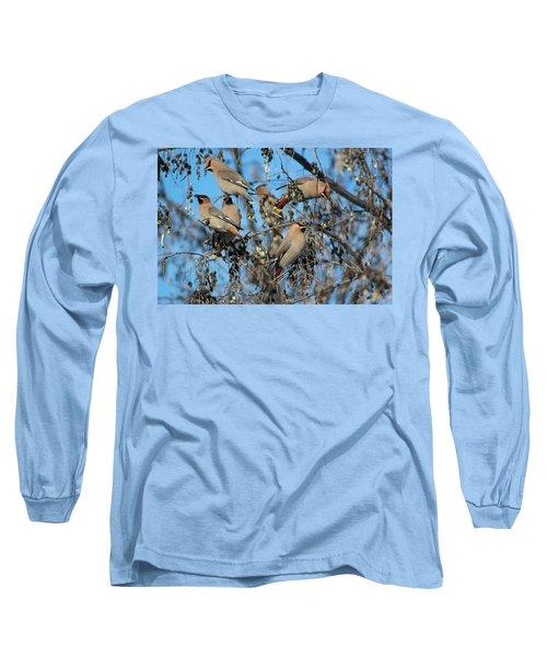 Bohemian Waxwings Long Sleeve T-Shirt by Kathy Bassett