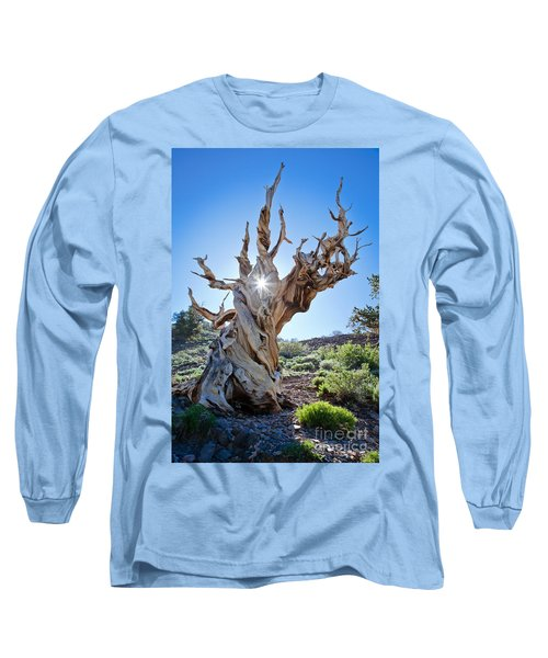 Bristlecone And Sun Long Sleeve T-Shirt