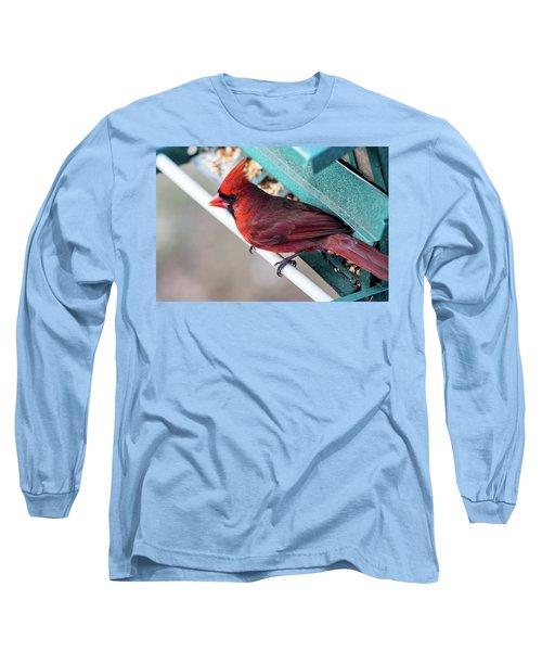 Cardinal Close Up Long Sleeve T-Shirt