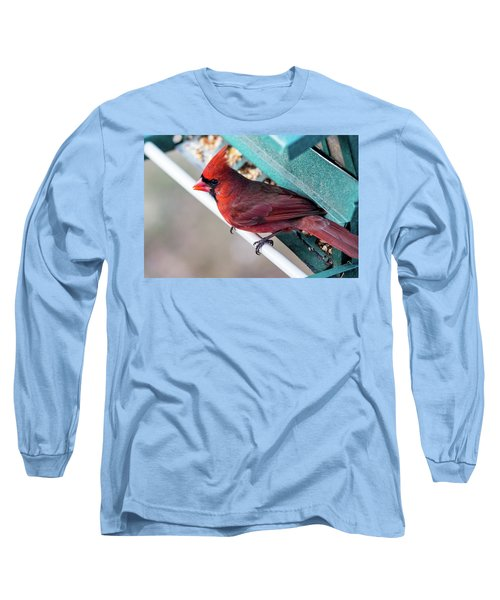 Cardinal Close Up Long Sleeve T-Shirt