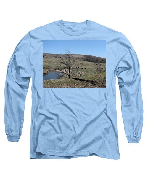 Cattle Along Deep Creek Long Sleeve T-Shirt