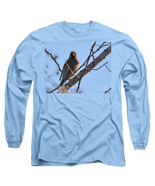 Cedar Wax Wing On The Lookout Long Sleeve T-Shirt by Barbara Dalton