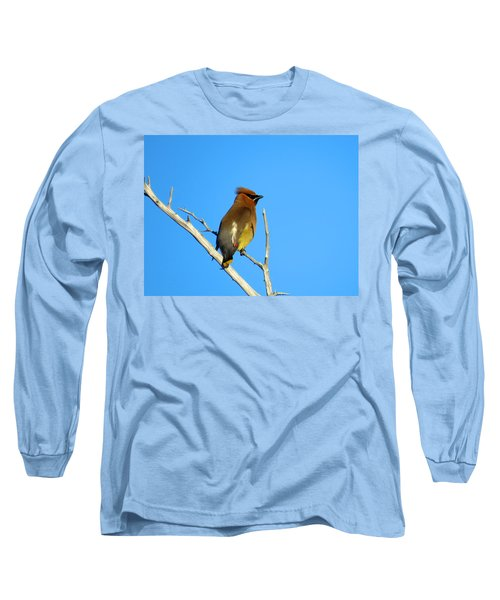 Cedar Waxwing Long Sleeve T-Shirt by Dianne Cowen