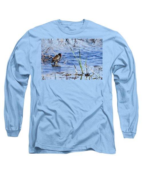 Common Gallinule Long Sleeve T-Shirt