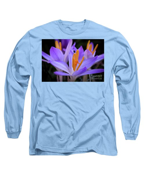 Crocus Explosion Long Sleeve T-Shirt by Douglas Stucky