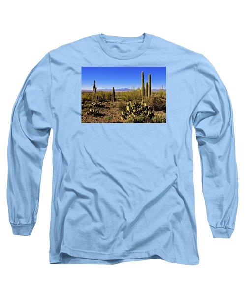 Desert Spring Long Sleeve T-Shirt by Chad Dutson