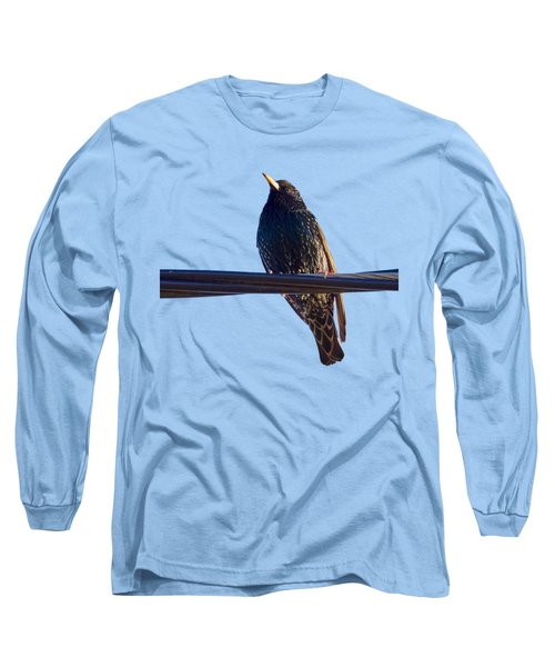 European Starling Trasparent Background Long Sleeve T-Shirt