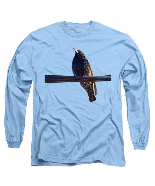 European Starling Trasparent Background Long Sleeve T-Shirt