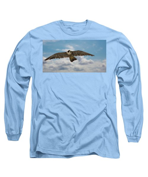Eyes In The Sky Long Sleeve T-Shirt