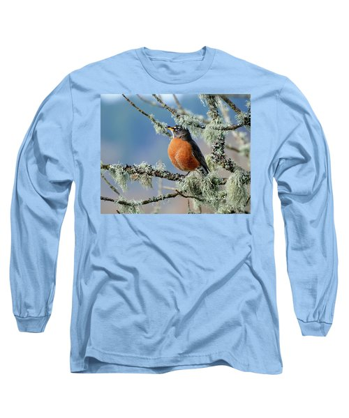 First Robin Of The Spring Long Sleeve T-Shirt by Greg Sigrist