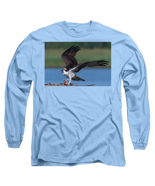 Fish For The Osprey Long Sleeve T-Shirt