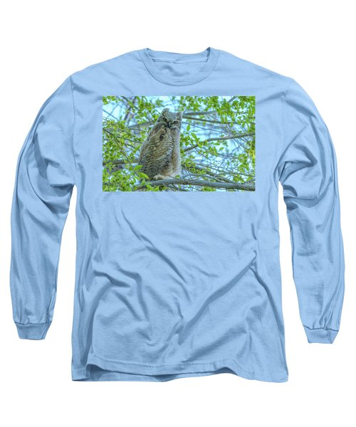 Fledgling Moment At Sundown Long Sleeve T-Shirt