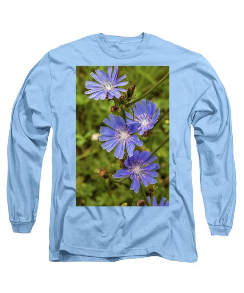 Flower Chicory Long Sleeve T-Shirt