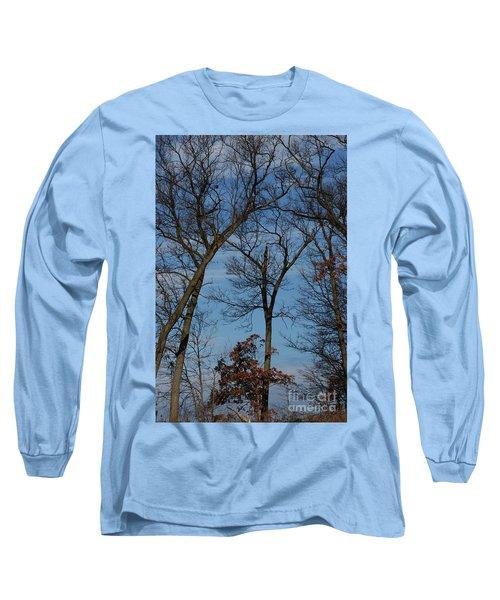 Framed In Oak - 1 Long Sleeve T-Shirt by Linda Shafer